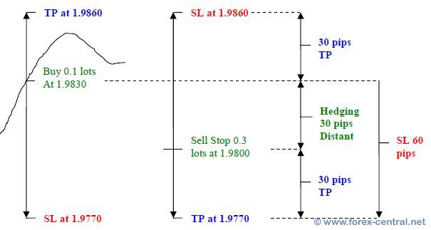 Sure fire forex hedging strategy mql4